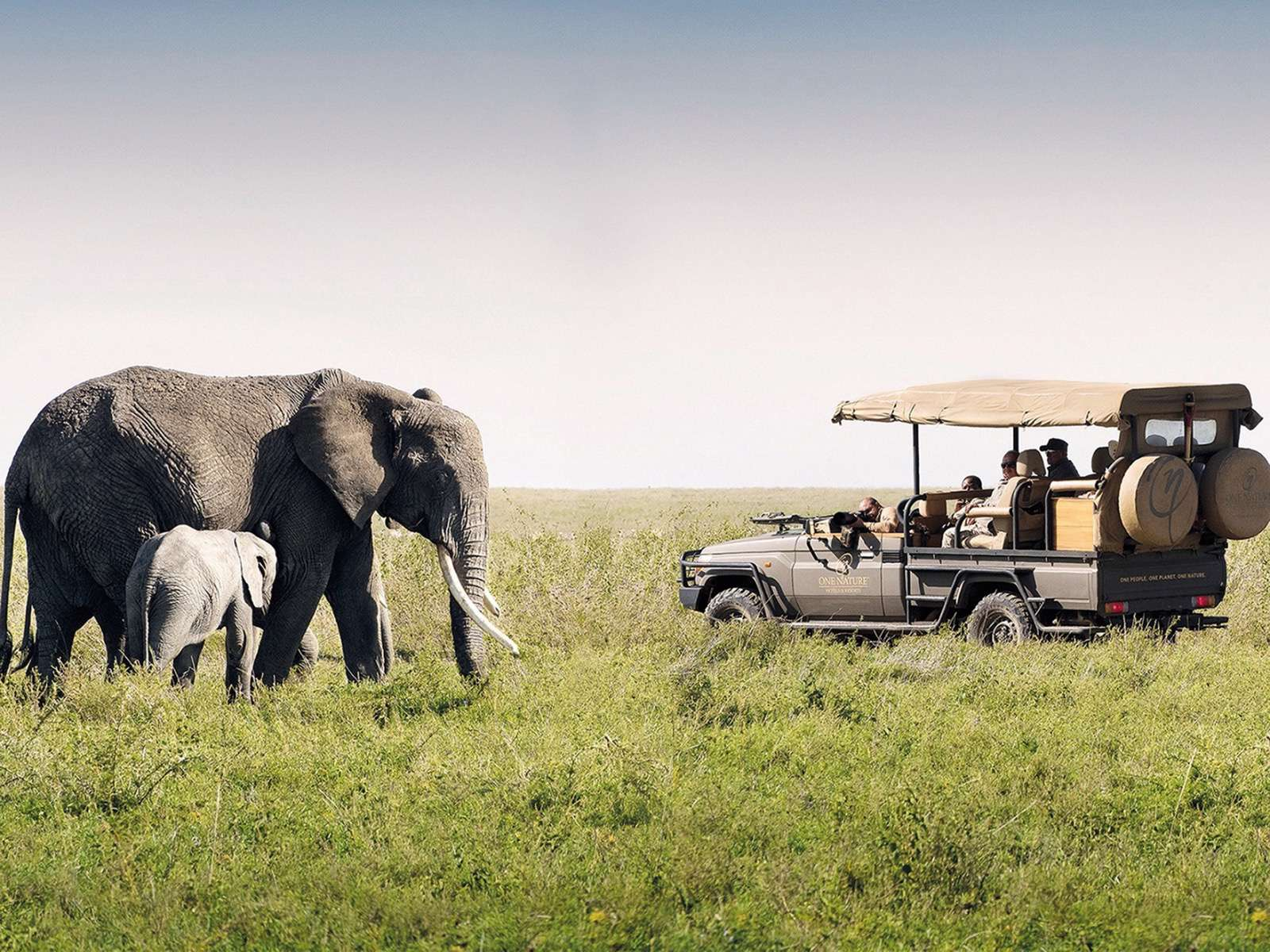 Luxury camp in the Tanzanian outback